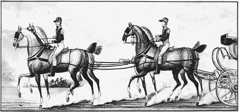 Forspænding à la d'Aumont 1801