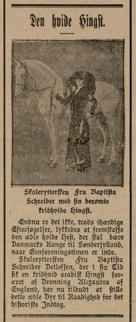 Skolerytteren Baptista Schreiber tilbyder sin hvide hingst Meneliktil kongens ridt.