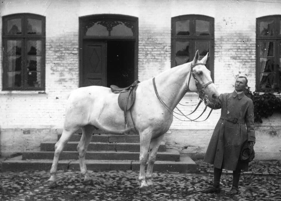 Staldmester Henrik Nielsen holder den hvide hest foran Dalhavegård.