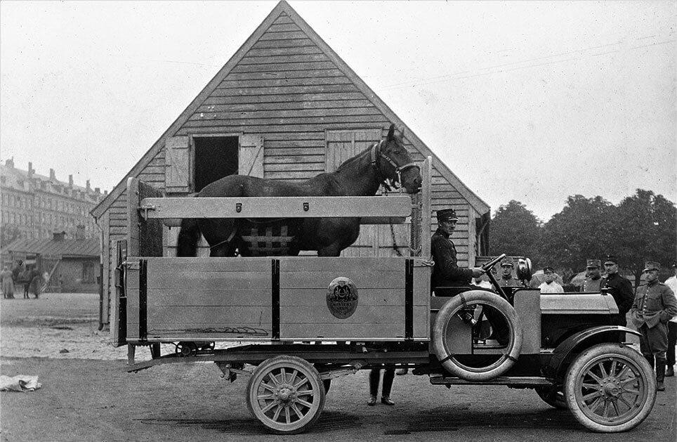 Hestens Værns hesteambulace 1918